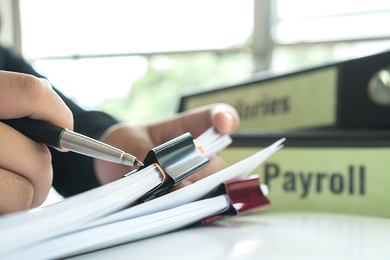 What Types of Payroll Solutions are Right for My Business & How Much Do they Cost?